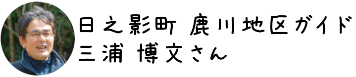 freefont_logo_APJapanesefont (20)